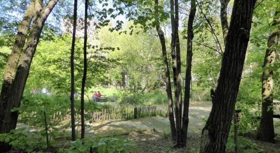 Whereez En Paris Jardin Naturel Pierre Emmanuel Biodiversite